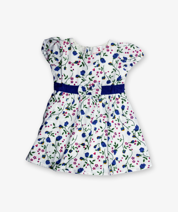 White and blue floral printed Frock