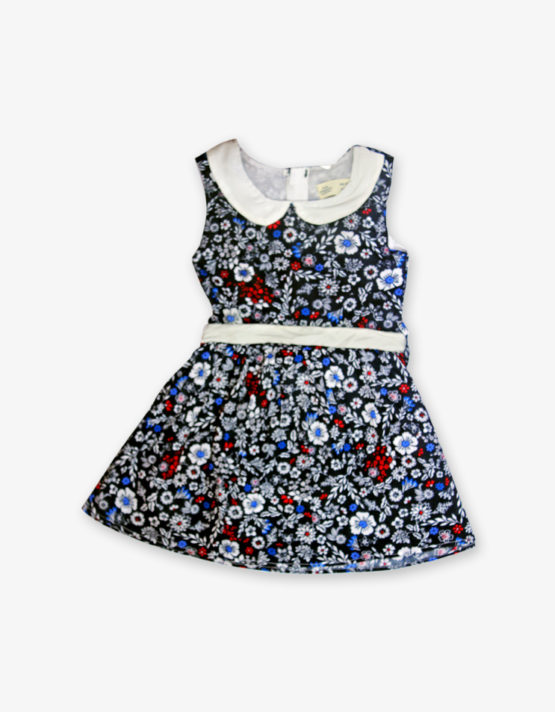 White & blue floral printed Frock