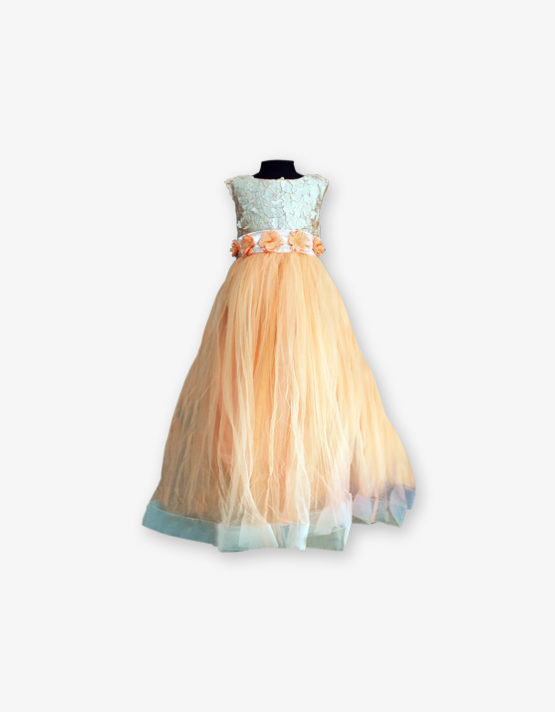 Golden Party wear Gown